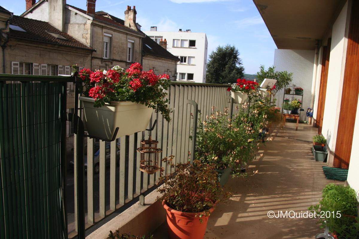 Petit jardin de balcon jean marie quidet les trains un r ve - Petit jardin balcon ...